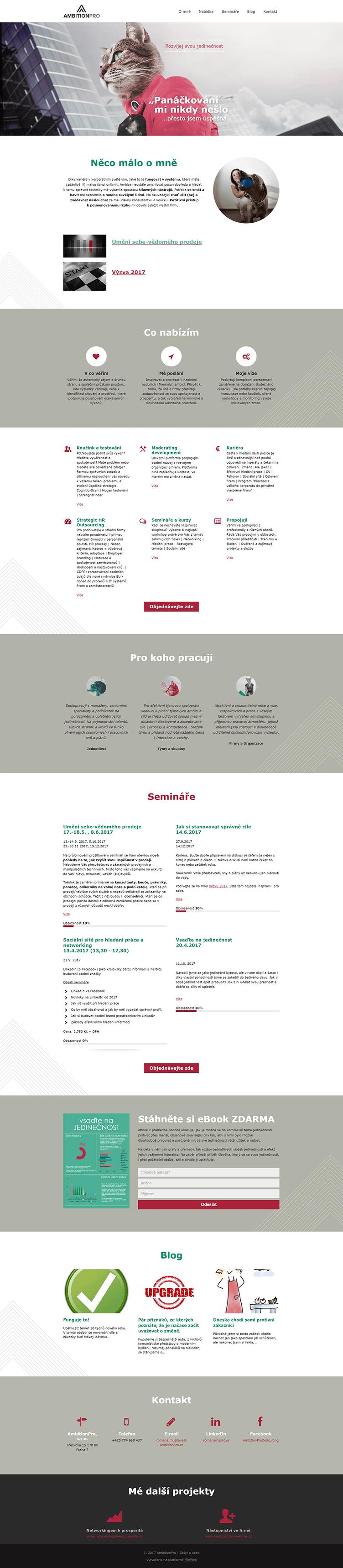 Webová prezentace – šablona
